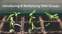 Introducing and Multiplying DNA Groups